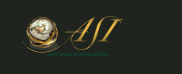 what is Asset Strategies International
