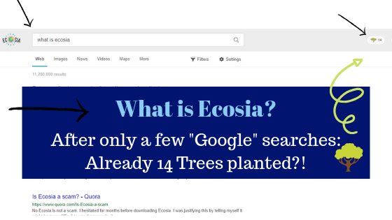 is ecosia a scam or legit