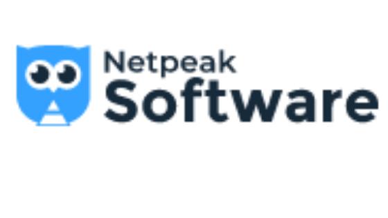 Netpeak Checker review